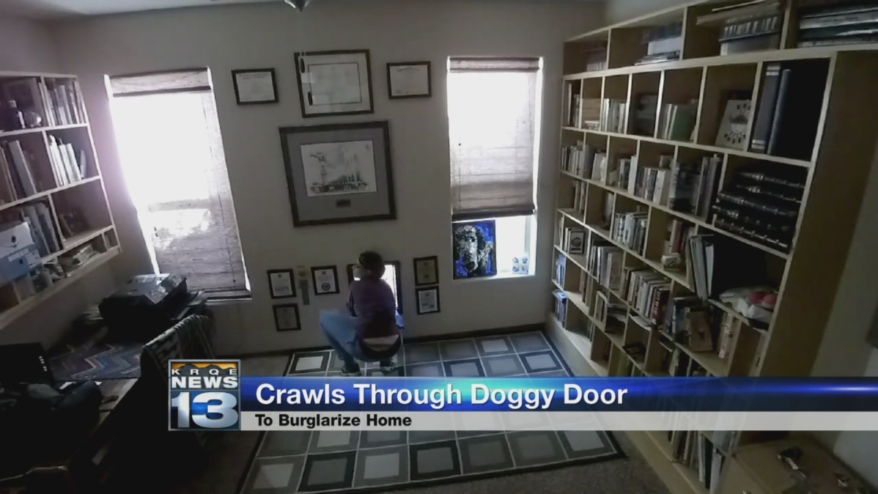 Woman Crawls Through Doggy Door Steals Homeowners Car Krqe