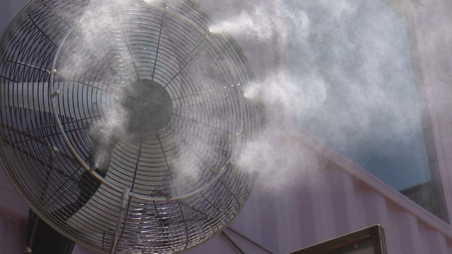 Misters myth: Are they illegal in Albuquerque?