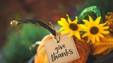 Let Someone Else Do the Cooking! Enter the Thanksgiving meal giveaway!