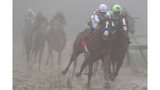 Preakness Stakes Quiz 2019